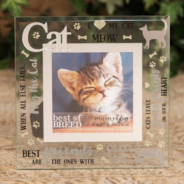 Cat Glass Photo Frame