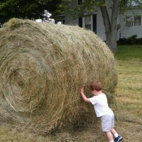 Sweet Shot Tuesday: Rolling Hay