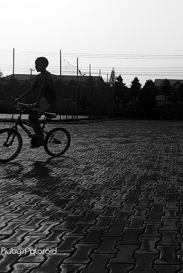bicycle shadow by rubys polaroid