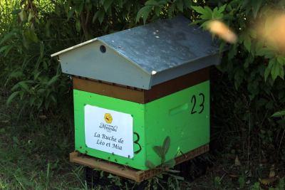 parrainer ruche Abeille Rucher du Marandou miel ruche apiculture fleur dordogne périgord bienvenue à la ferme