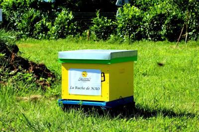 parrainer ruche 27 - rucher de marandou
