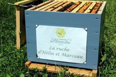 parrainer ruche 13 - rucher de marandou