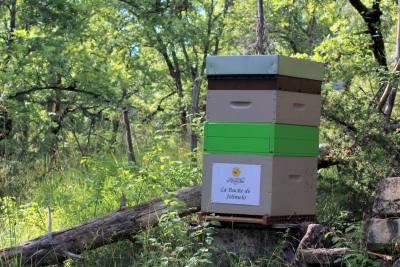 parrainer ruche 36 - rucher de marandou