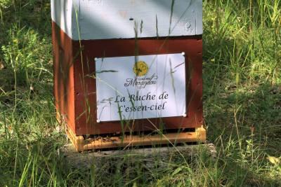 parrainer ruche 3 - rucher de marandou