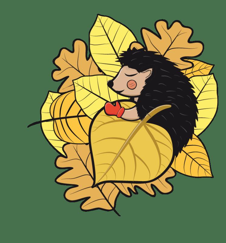 hedgehog - educational cartoon