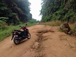 Eine Roller Toeur darf in Thailand nicht fehlen