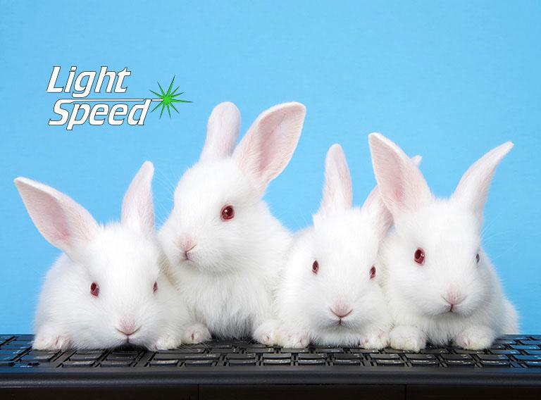 Hoppy Easter! LightSpeed Internet