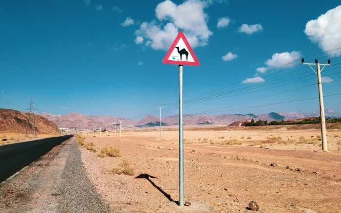 znak z wielbłądem w Jordanii