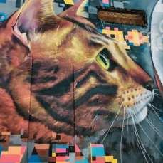 murale-w-paphos