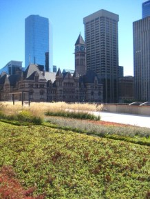 The View from City Hill's Green Roof --The Future of Urbanism