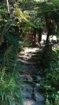 Following a hidden park