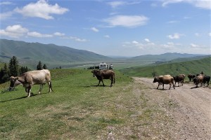 Nahe der kirgisischen Grenze im Gebirge