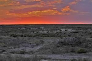 Sonnenuntergang in der kasachischen Steppe
