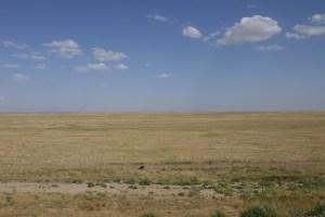 Kazakhstan, steppe