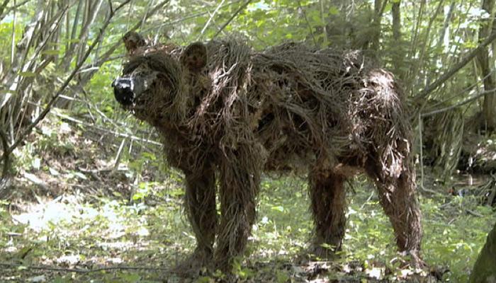driftwoodbear