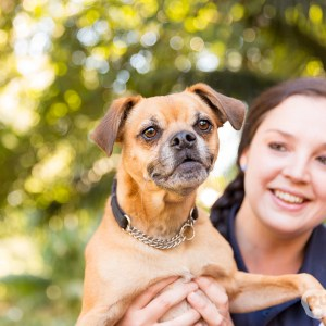 Commercial Sessions – Ruff 'n' Stuff Pet Photography