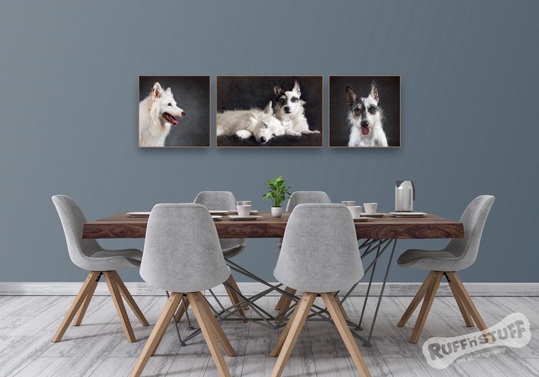 Ruff 'n' Stuff Pet Photography - Wall Art