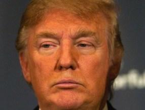 very-orange
