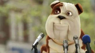 churchill-insurance-dog