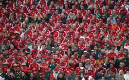 British and Irish Lions fans watch the action from the stands