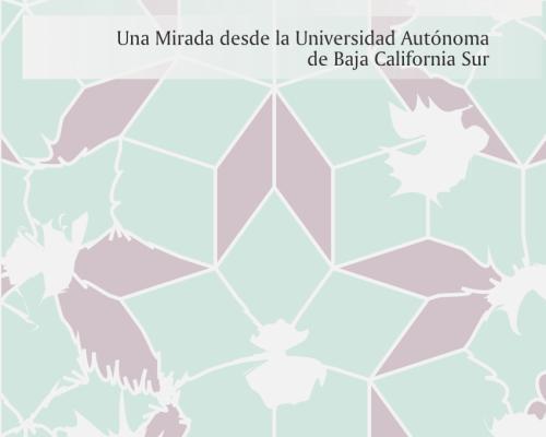 Para descargar: Violencia y género en la Universidad, UABCS (2018)
