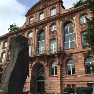 Senckenberg museum top 13 van Frankfurt