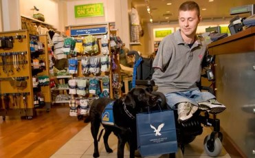 A Man with a disability receiving aid from an assistive canine while shopping. Image from: http://millennialmagazine.com