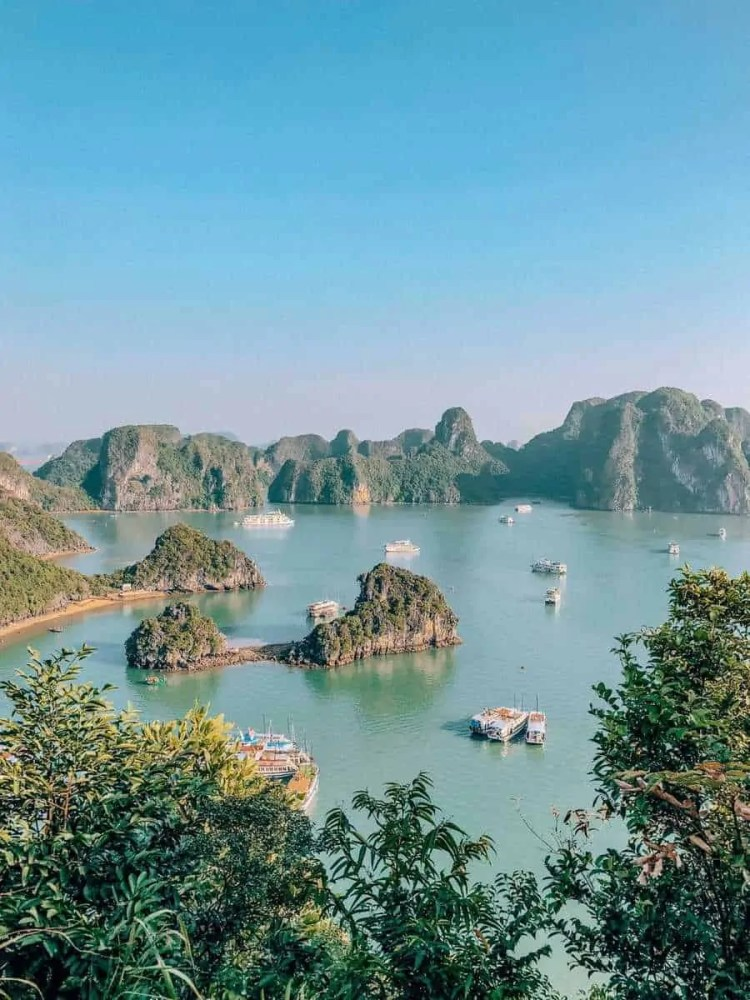 halong bay majestic cruises, halong bay halong bay cruise hunters, titop island, how to get to halong bay, halong bay weather, vietnam wonder of the world, hanoi to halong bay, best halong bay cruises, sung sot cave, best cruises halong bay, best halong bay cruise, halong bay cruise overnight, halong bay cruises, ha long bay cruise, halong bay cruise, vietnam tours, halong bay tours, overnight cruise, halong bay to hanoi, halong bay from hanoi, paradise elegance cruise, cat ba ventures