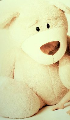 """Auch der 150cm große Teddy """"Nicci"""" wurde """"gekidnappt"""""""