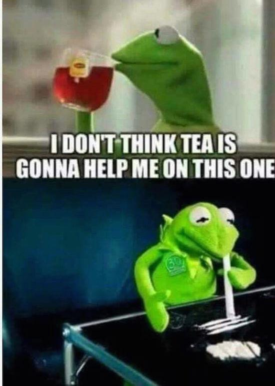 Image Of Kermit Car Window Meme Template Kermit Car Window Blank