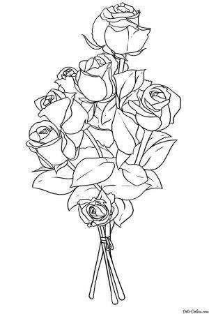 Раскраски quotцветы розыquot скачать и распечатать бесплатно