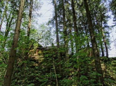 bei der Entdeckung von Hexenhäusern im Wald, kommt mein Autoren-Gehirn immer auf ganz seltsame Ideen ;)