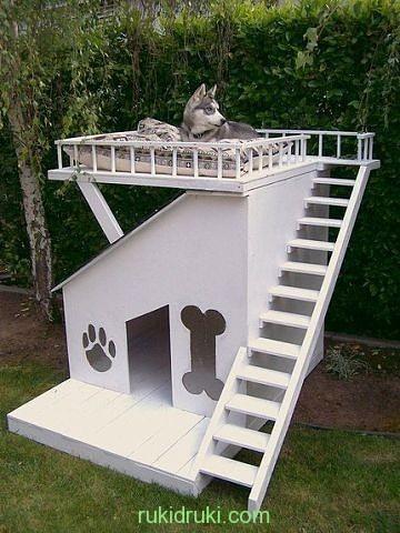 будка для собаки дача