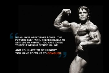huis picture poster bodybuilding arnold