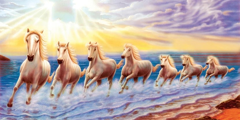 7 Horse Running Hd Images Walljdi Org