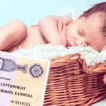 child 5 - Ипотека в Сбербанке - ставки, условия, программы