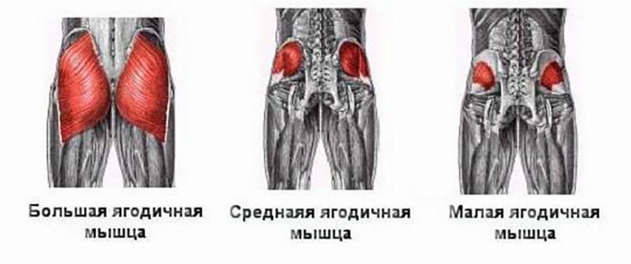 cum să slăbești în jurul claviculei tale)