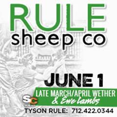 Rule Sheep June 1 Online Sale