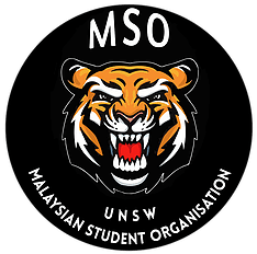 UNSW MSO