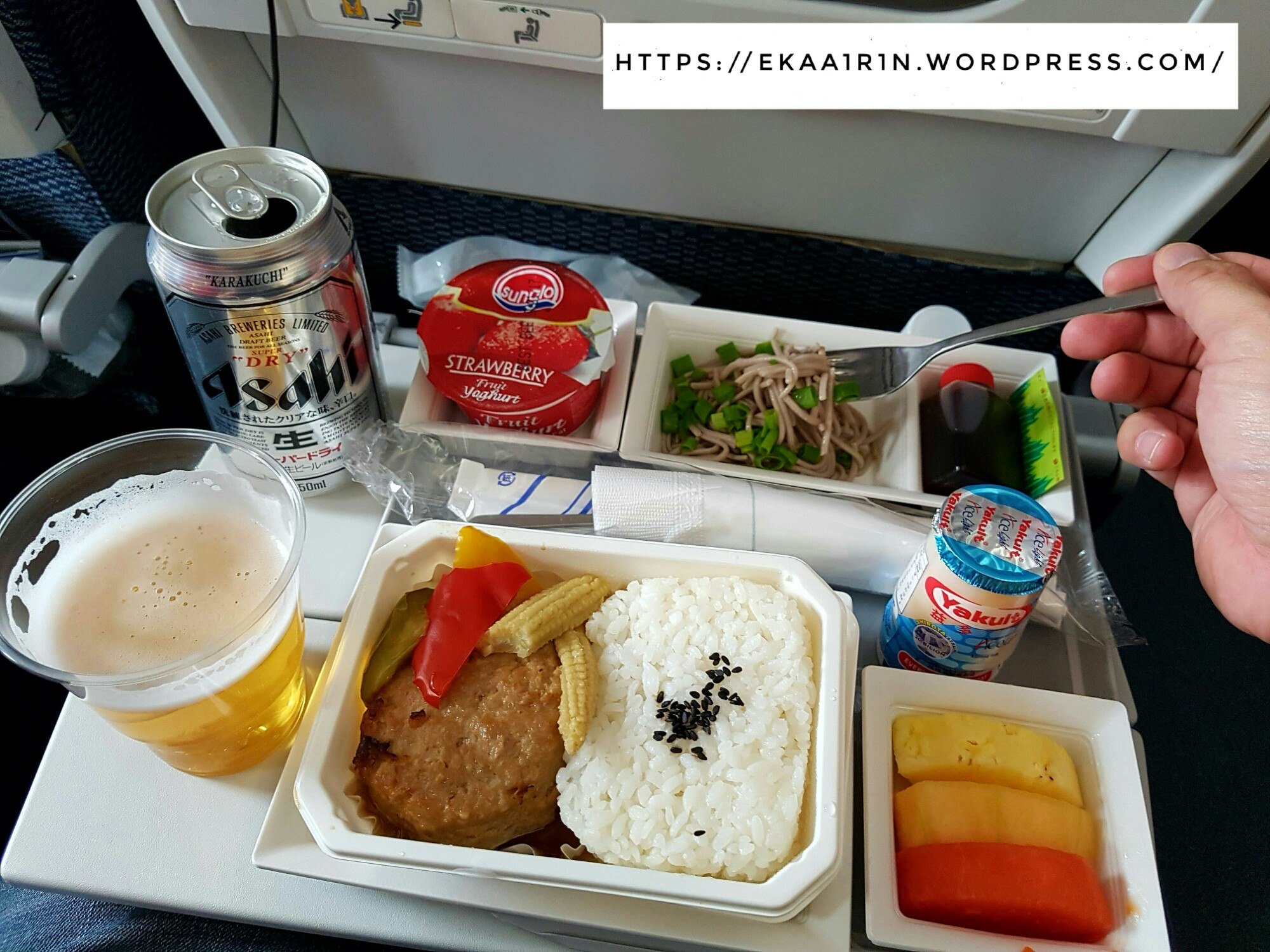 Starting from food…typically you will find that airlines food is far far from delicious and at the max you can expect is acceptable especially if you are