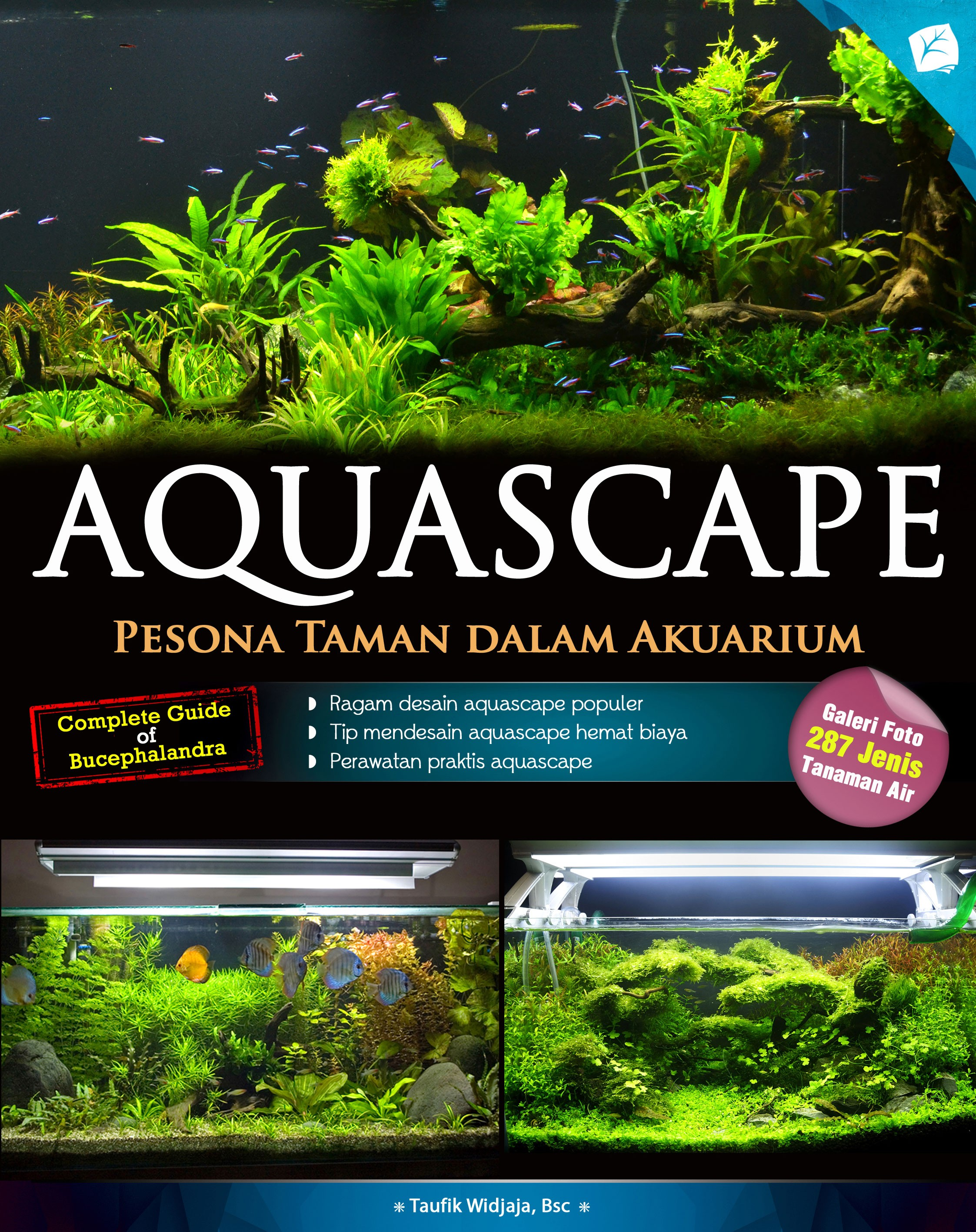 Aquascape revisi 2015