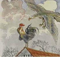 Ayam Jago dan Burung Elang