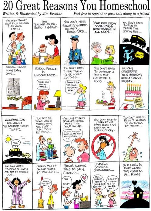 homeschool reason cartoon by Jim Erskine