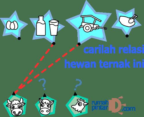 mencari relasi dari hewan ternak
