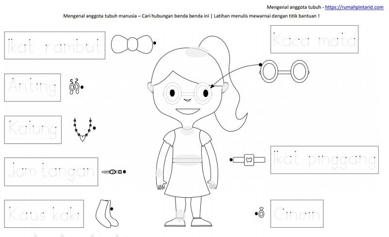 1 lembar belajar anak TK SD - mengenal anggota tubuh dan cari hubungannya