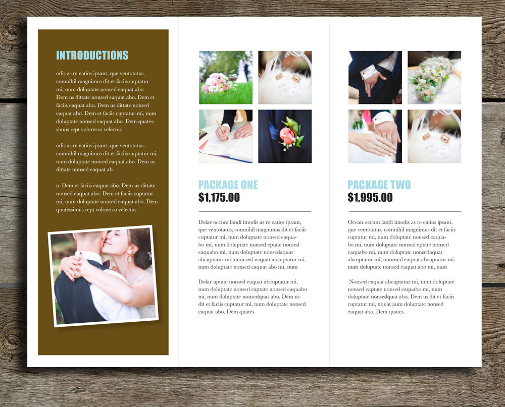 brochure templates - tri fold brochure template bella rumble design store