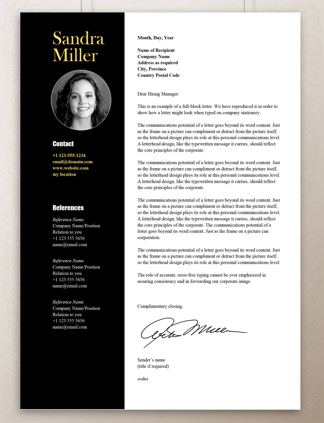 Contemporary Resume Template Professional Resume Template Word