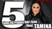 5 Things You Probably Didn't Know About Tamina