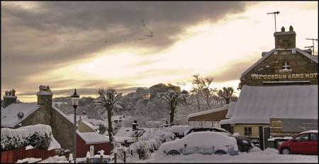 geese-snow-2009