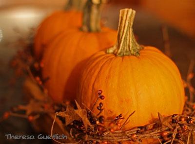 Pumpkin1 with watermark